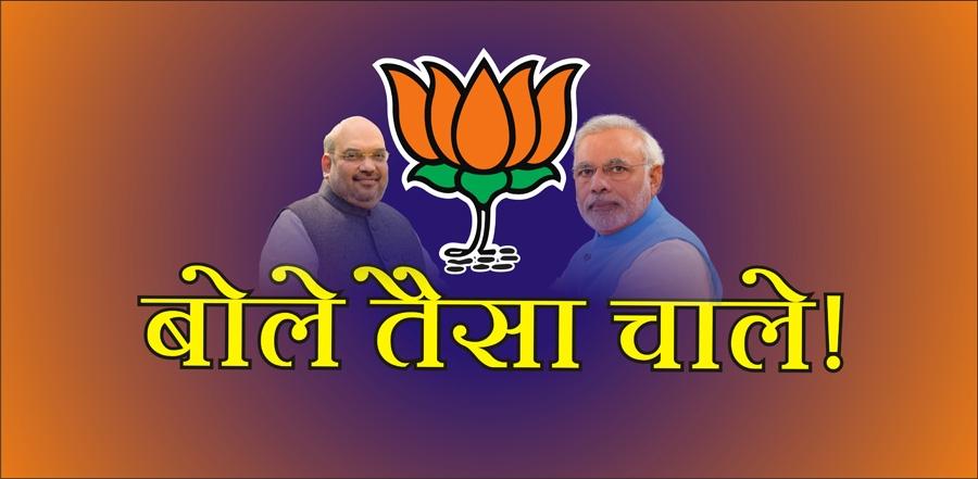 BJP manifesto outlines vi