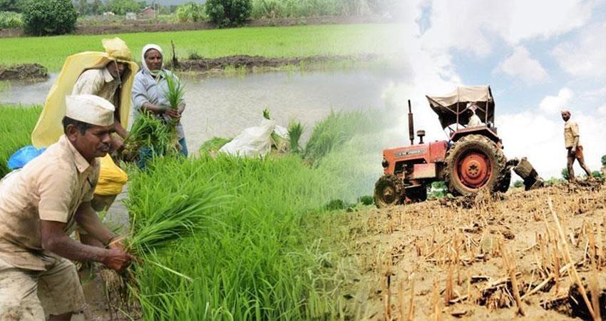 agricul  opprunuti in mah