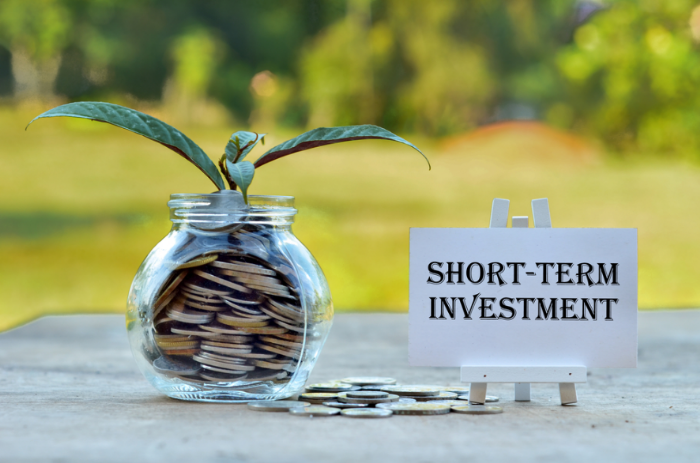 short  investment_1